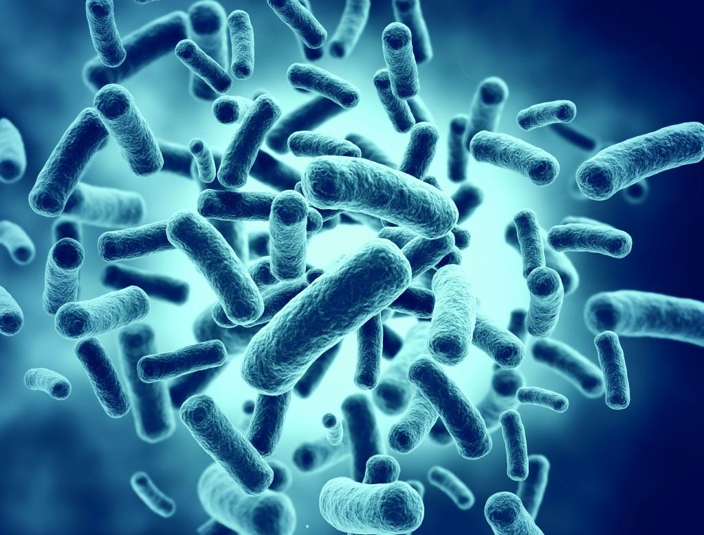 probiotic la gi